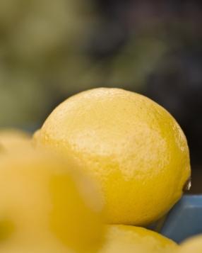 Lemon-Market Day